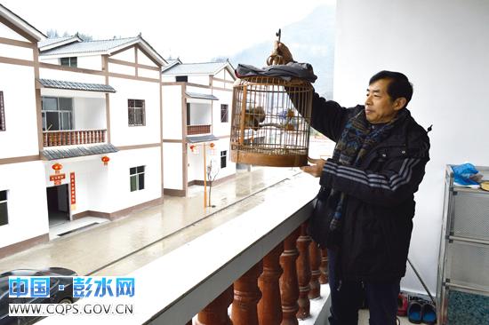 高山移民的新生活-最新播报-中国·彭水网